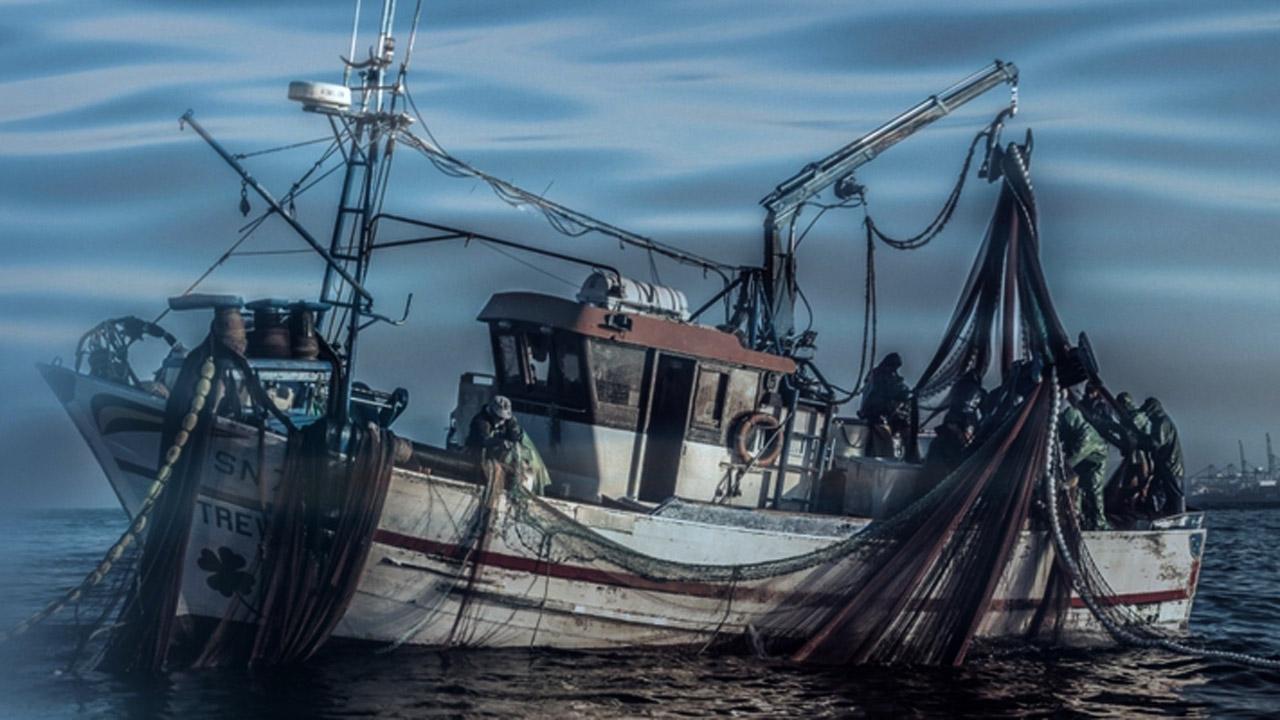 Mar De Sines Image